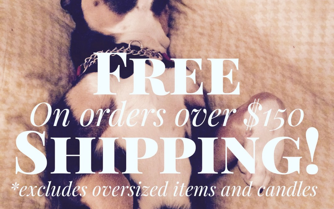 Free Shipping on orders over $150! Enter this coupon code at checkout:  150+freeshipping