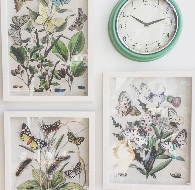 New shadow box butterfly prints in the store!  Also, our favorite kitchen clock is back in stock!  Everything is bright and blooming today – stop by to see how we can rejuvenate your space 🌷🌱