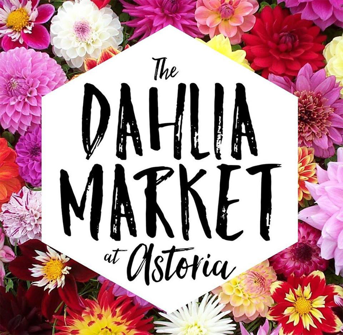 Stop by this Friday after 5 for some dahlias for sale and a tasty beverage!  Can't believe it's first Friday again already!