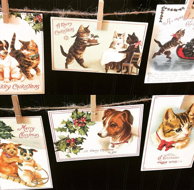 Holiday kitty and doggy postcards!  They come in a mixed pack and are great for mailing or displaying 🐱🐶📬