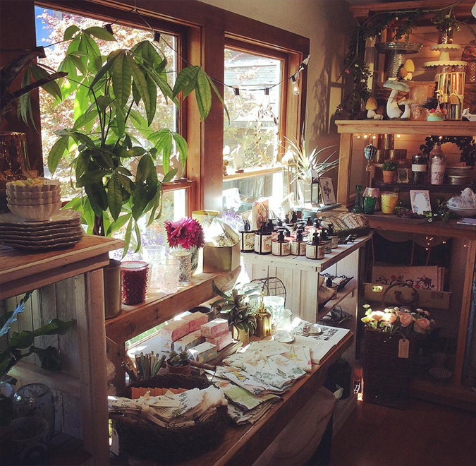 Sunny afternoon vibes ☀️☀️☀️😎  – It's been warm , sunny and all around nice in Mendocino  Enjoy it while it lasts :)