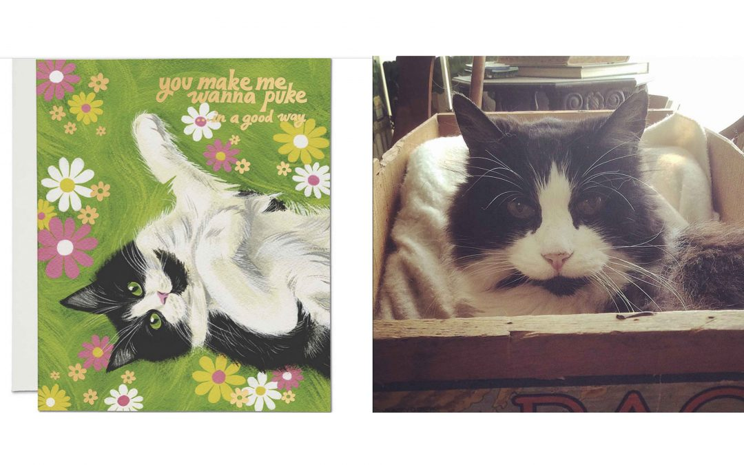 Kitty Cat Cards - Red Cap Cards - Black and White Cat Card - Fluffy Cat Card - Love Cats - Gift Shopping Mendocino Village